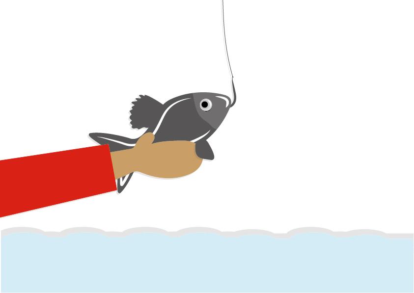 rybka z wody